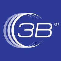 3B Logo